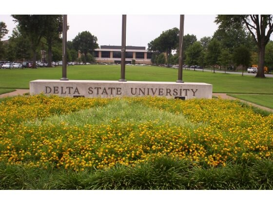 Delta State University Affordable Online Master's Degrees in Nursing