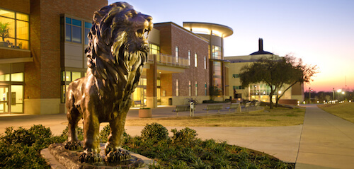 texas a&m university commerce