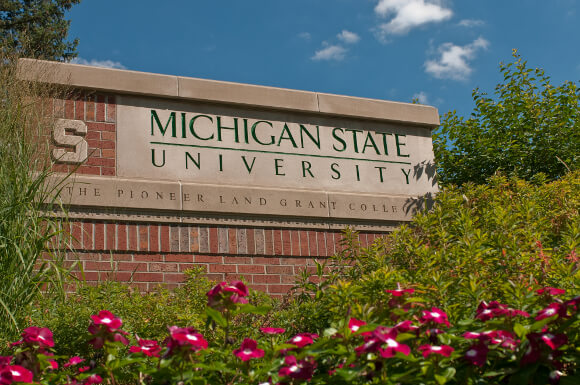 Michigan State Online Educational Psychology