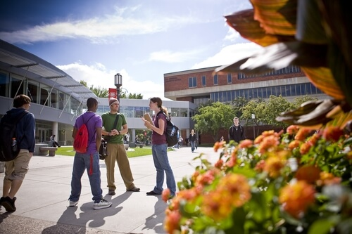 St. Cloud State University - 30 Online Master's English